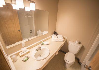 Bedrock Motel - Guestroom_Bathroom